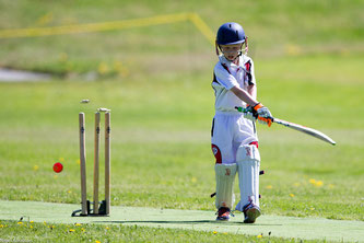 junior cricketer